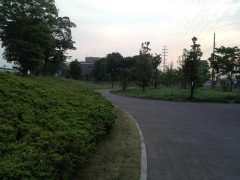 20120517-051650.jpg