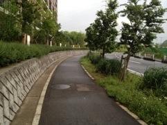 20120518-050953.jpg